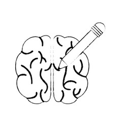 sketch brain pencil innovation vector image