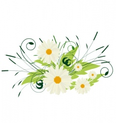 a bouquet of white flowers vector image vector image
