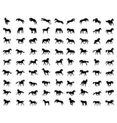 Big set horses silhouettes vector