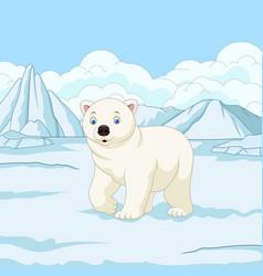 Cartoon polar bear in snowfield vector