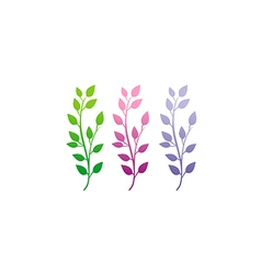 Leaf colorful set nature beauty logo vector