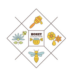 Organic honey collection logo label tags design vector