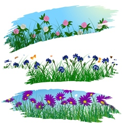 Summer flower brushes vector