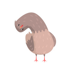 Surprised dove with head tilting to one side vector