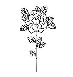 Tattoo rose flowertattoo mystic symbol with word vector