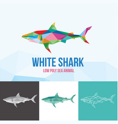 white shark with triangle polygonal style vector image