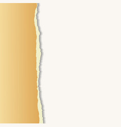 Old torn paper Background for your business vector image vector image