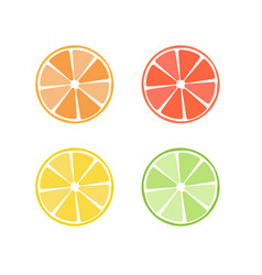 citrus fruit icon symbol set vector image