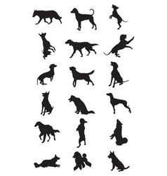 dogs breeds silhouettes vector image