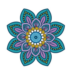 Floral mandala icon vector
