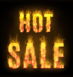 hot sale design with fire vector image