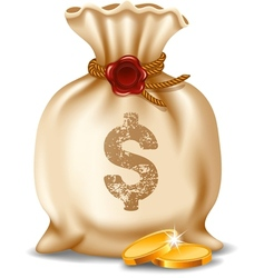 Moneybag vector image