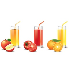 tomato orange apple juice vector image