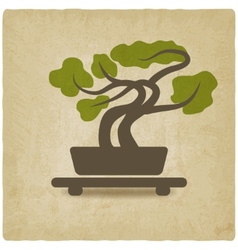 bonsai old background vector image vector image