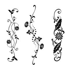 set floral elements vector image