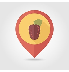 Blackberry bramble flat pin map icon Berry fruit vector image vector image