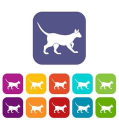 cat icons set flat vector image