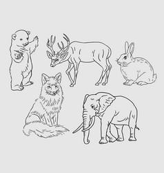 wild animal sketches vector image vector image