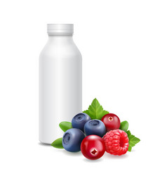 forest fruits yogurt packagings box bottle vector image