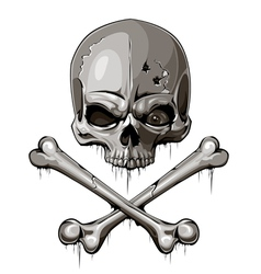 Decrepit skull with two crossed bones vector image vector image