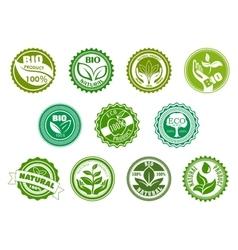 Bio eco organic and natural green labels vector image