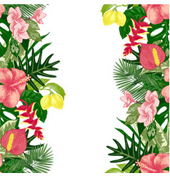 hand drawn tropical background vector image vector image