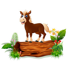 Cartoon baby horse on tree trunk vector