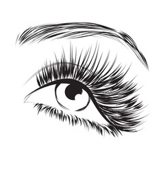 Female eye drawing long eyelashes vector