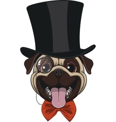 Funny pug in hat vector