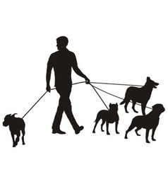 Man and four dogs vector