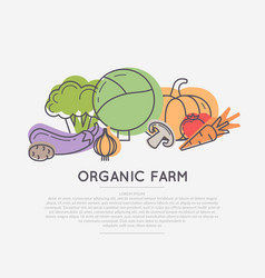 Organic food poster vector