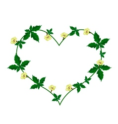 Vine of Flower and Leaves in Beautiful Heart Shape vector image