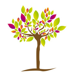 colorful tree plant with several leaves vector image vector image