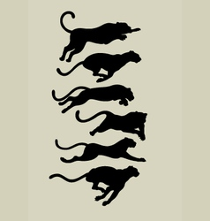 Leopard Running Silhouettes vector image vector image