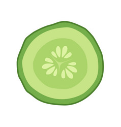 cucumber slice cross section with seeds vector image