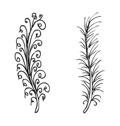 Doodling hand drawn amazing feathers vector