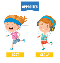 Fast and slow vector