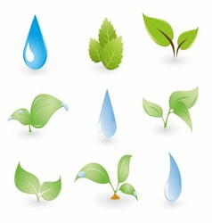 Leaf and Water Drops on a Blue Background vector image