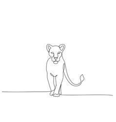 Lioness standing continuous one line drawing art vector