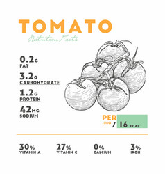 nutrition facts of raw tomato vector image