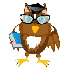 Owl teacher with book vector