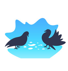 two funny pigeons walking and eating grains vector image