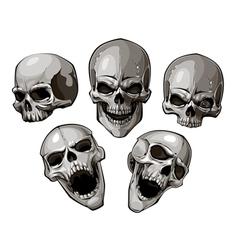 Skulls 4 vector image vector image