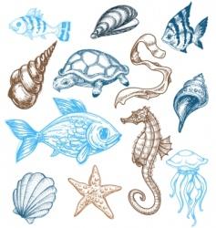 marine life drawing vector image