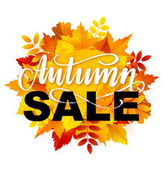 Autumn sale banner design vector