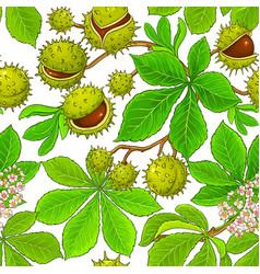 Chestnut pattern on white background vector