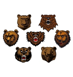 Different brown bear heads vector