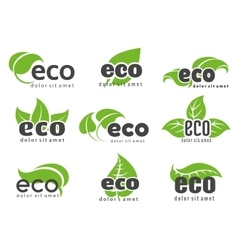 Eco and nature logo labels vector image