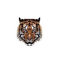 polygonal tiger head logo design vector image