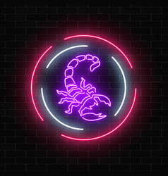 Scorpio glowing neon sign in circle frames on vector